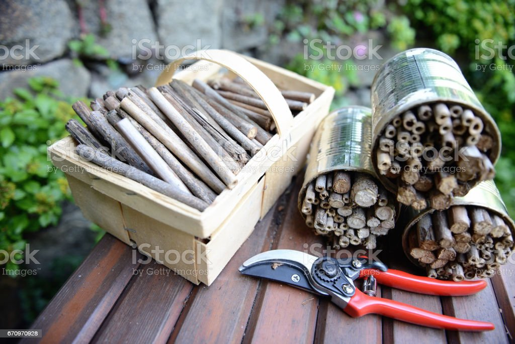 tools to build an insect hotel for solitary wild bees stock photo