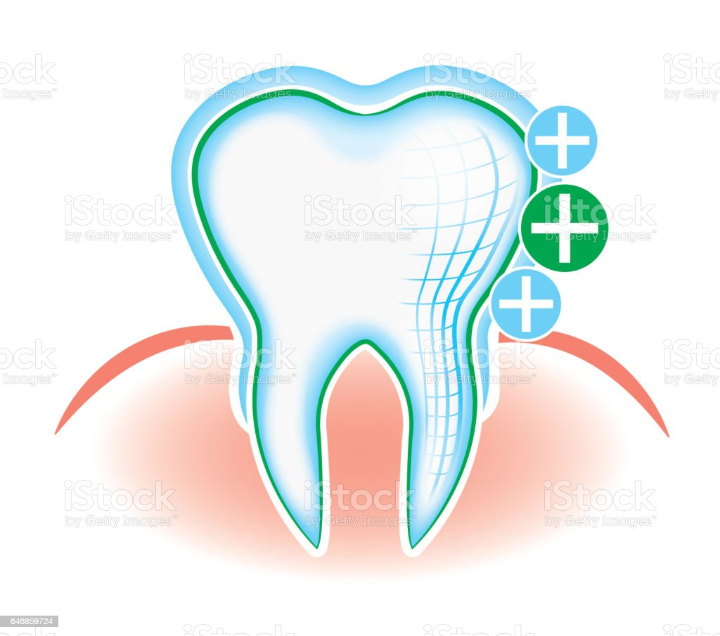 Tooth and gum, hand drawing, dentistry, dental cleaning, oral hygiene stock photo