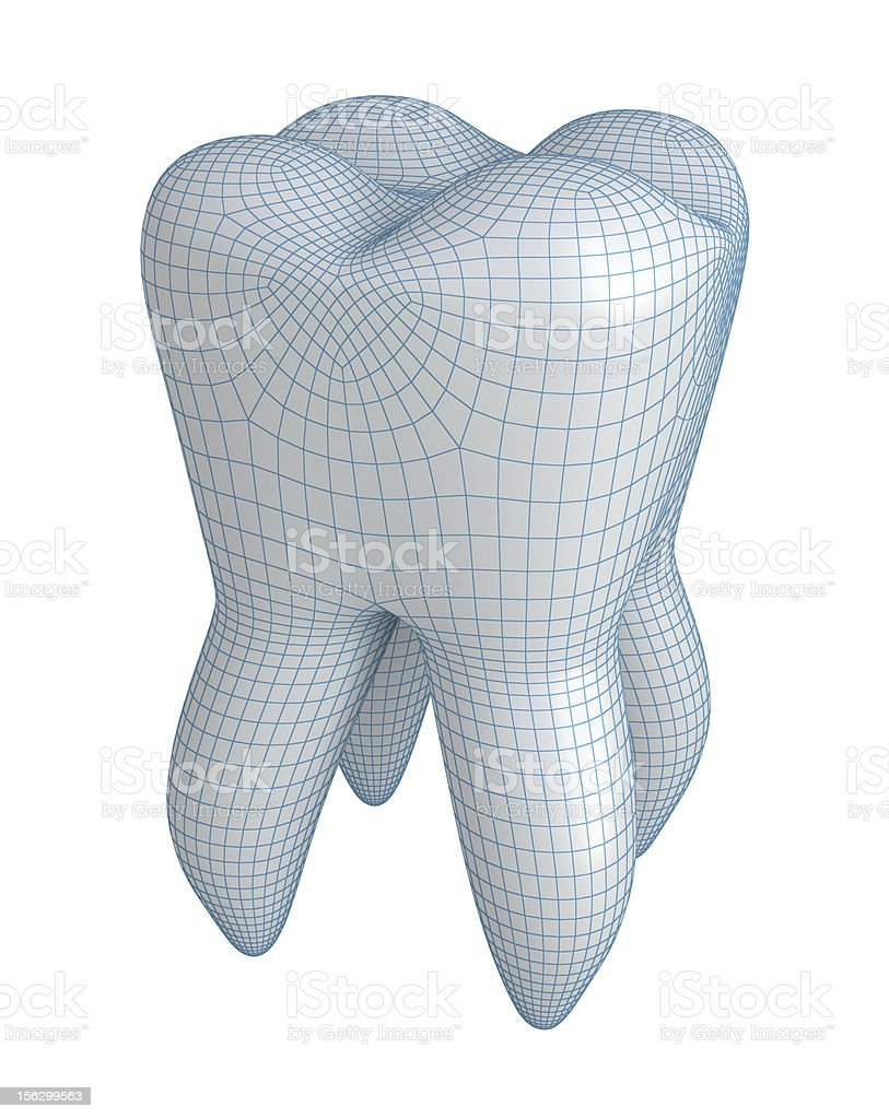 Tooth on white royalty-free stock photo