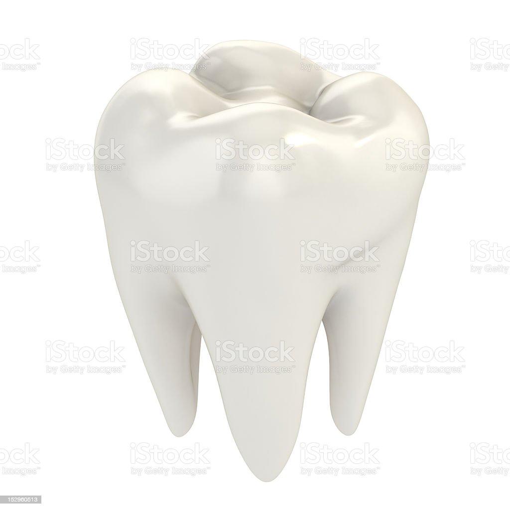 tooth stock photo