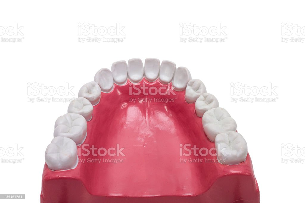 Tooth prothesis. stock photo