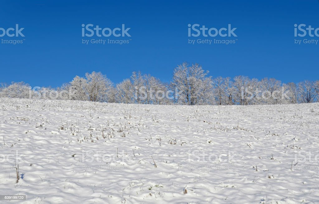 Top of a Snow Covered Hill stock photo