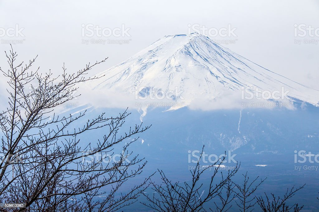 Top of Fujiyama with branches of Sakura tree stock photo