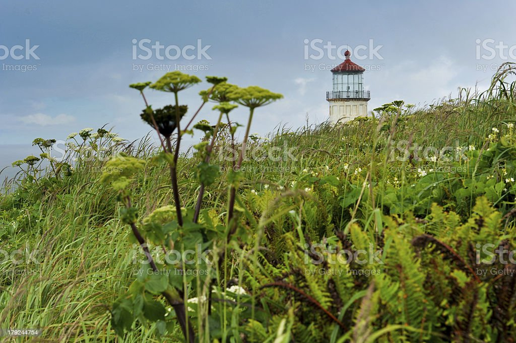 Top of lighthouse seen over a field royalty-free stock photo