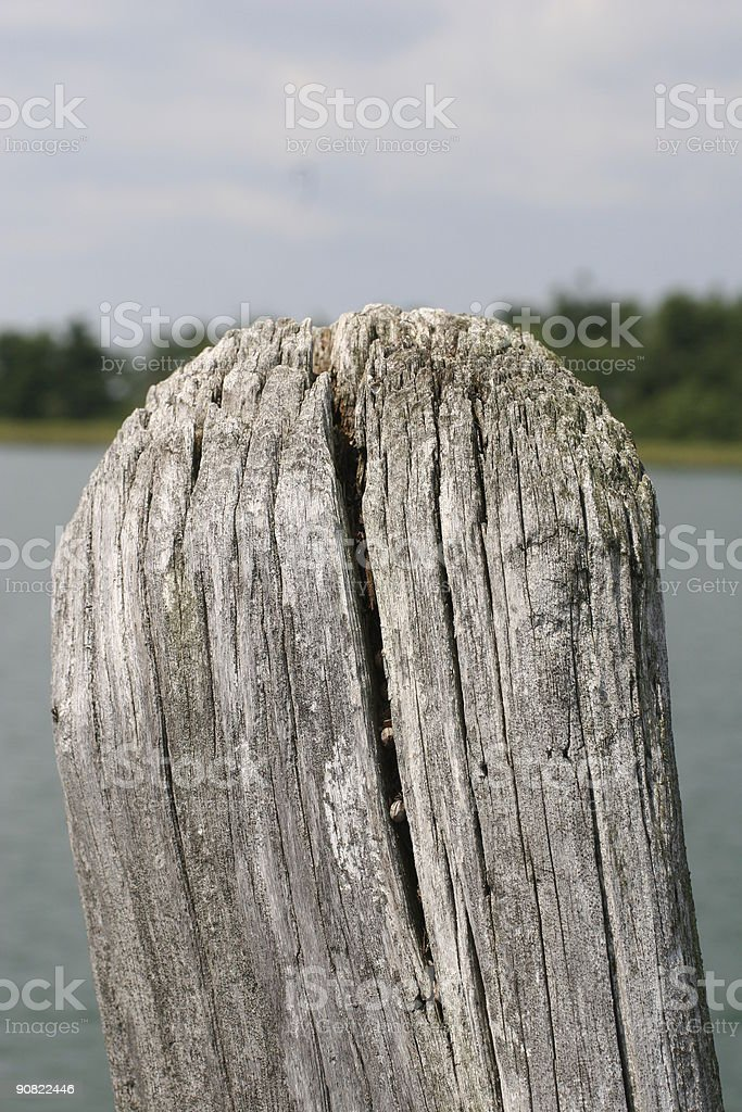 Top of Old Weathered Post royalty-free stock photo