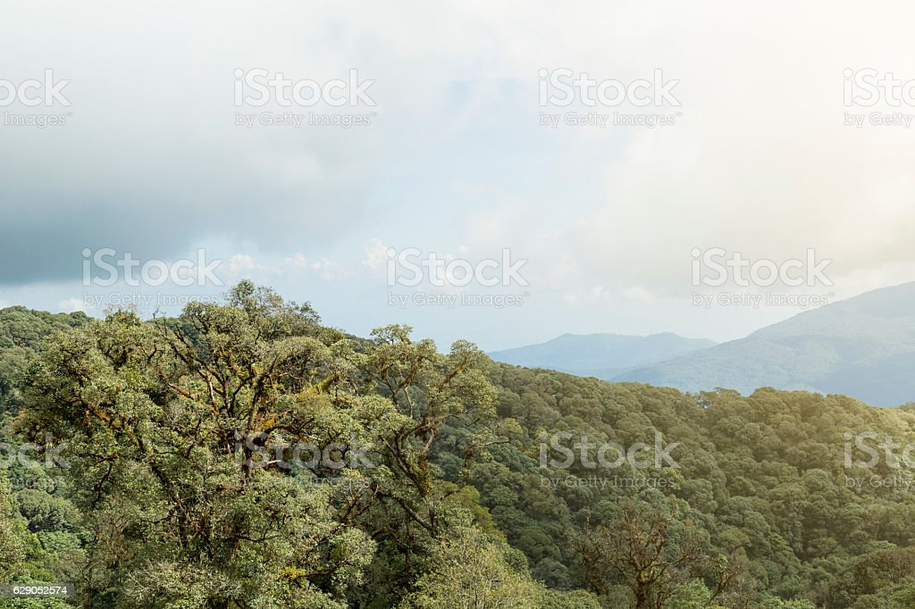 top of thailand view stock photo