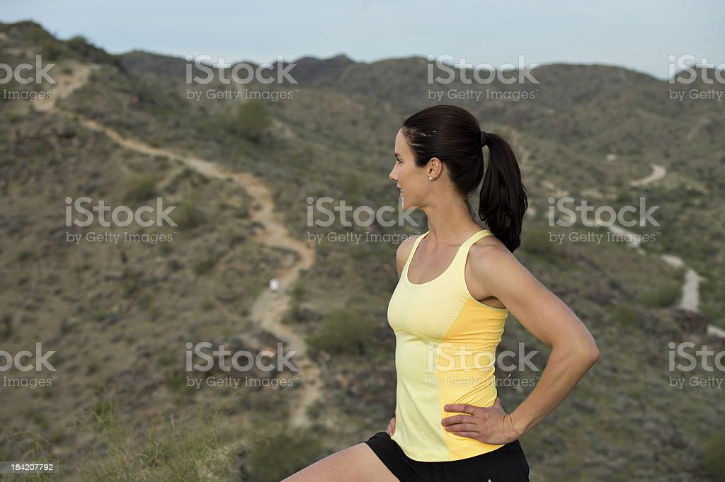 Top of the Desert Trail royalty-free stock photo