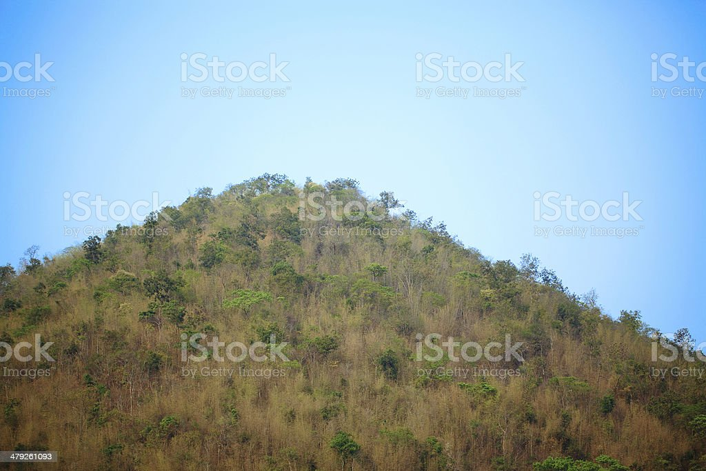 Top of the moutain stock photo
