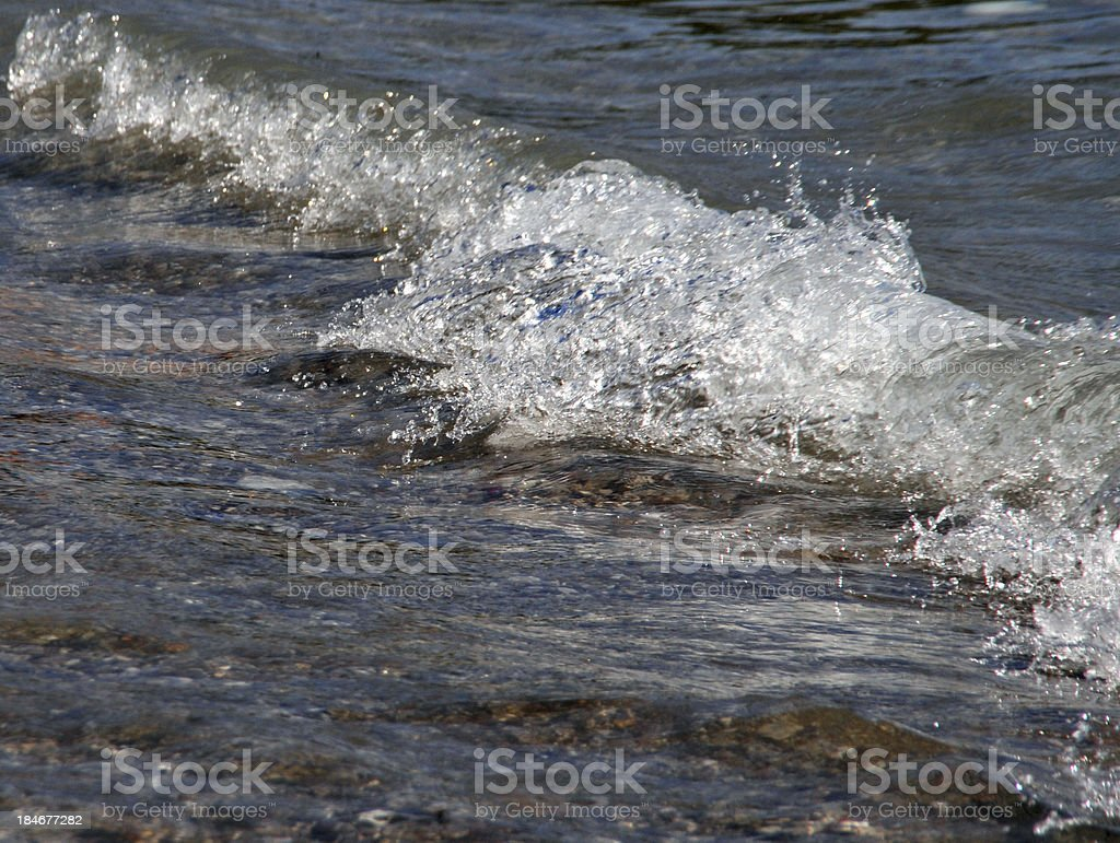 Top of the water royalty-free stock photo