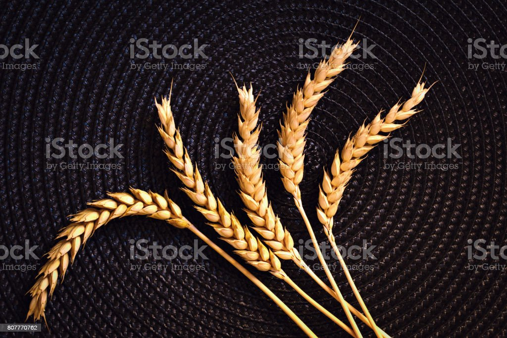 Top view Dried wheat ear on black mat whit copy space stock photo
