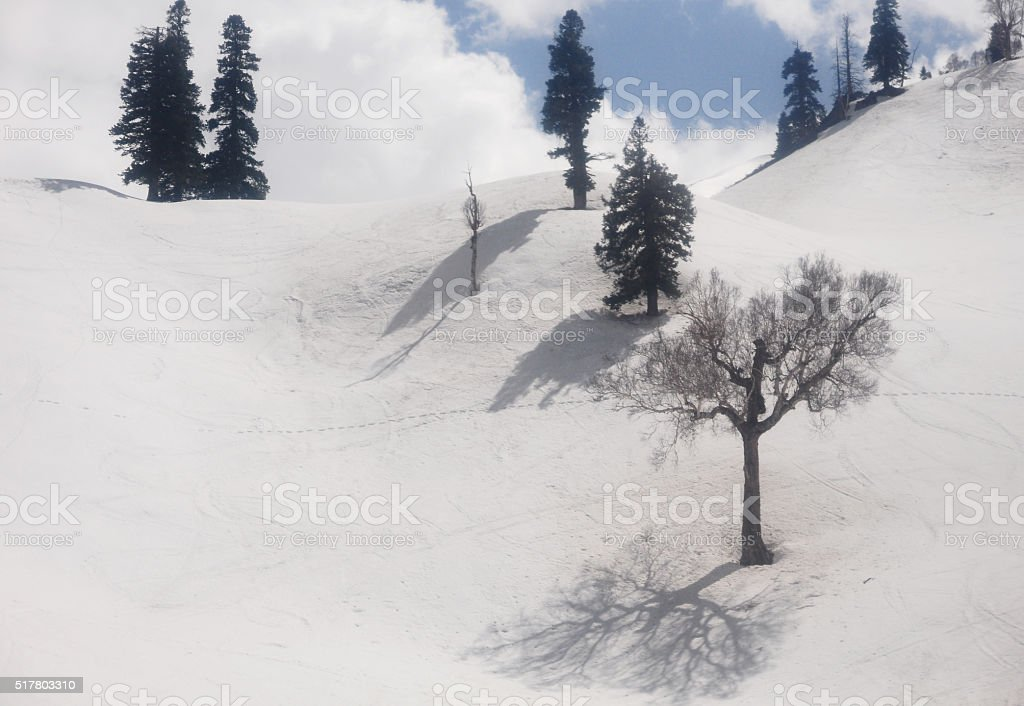 Top view from cable car, Gulmarg, India stock photo