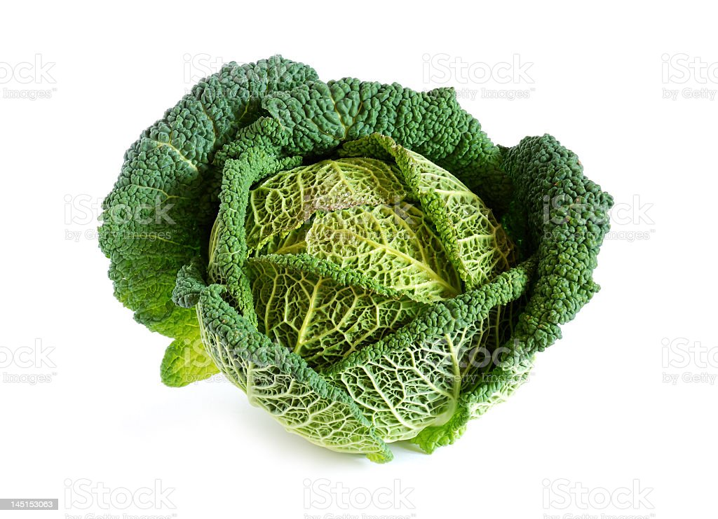 Top view of a fresh savoy cabbage on a white background royalty-free stock photo