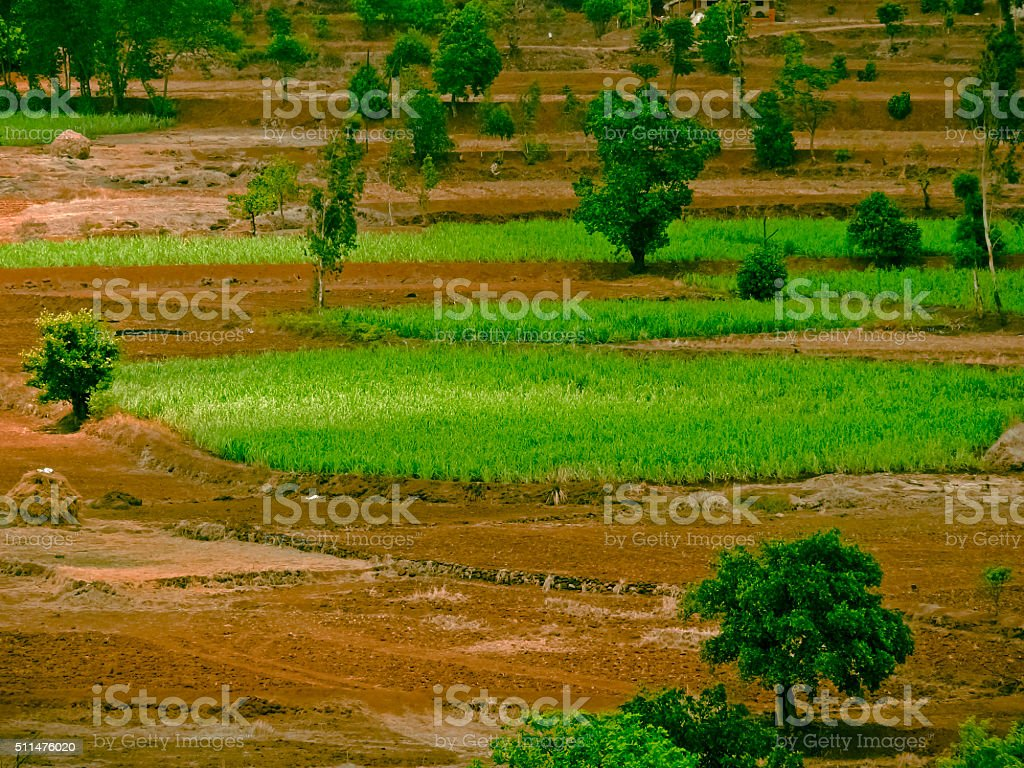 Top view of an agricultural land and village, Nilkantheshwar, Ma stock photo