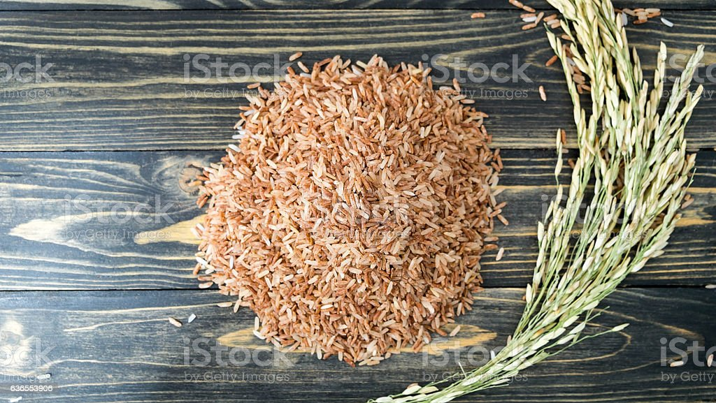 Top view of Brown rice , rice plant with paddle stock photo