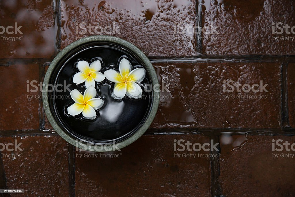 Top view of ceramic bowl with floating flowers -stock image stock photo