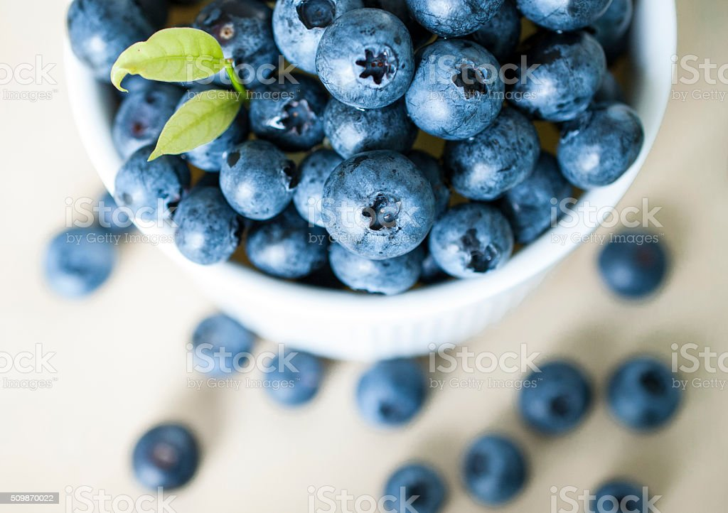 Top view of fresh blue berries in white blow stock photo