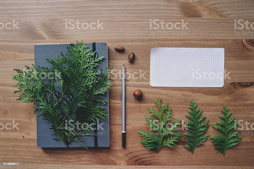 top view of notebook and pine branches stock photo