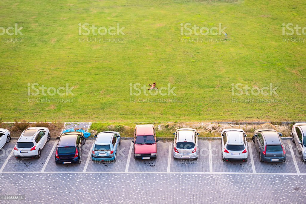 top view of parking multi-storey building and dog lying stock photo