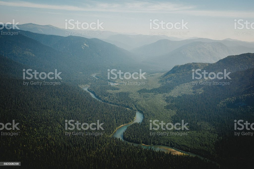 Top view of the taiga forest and river royalty-free stock photo