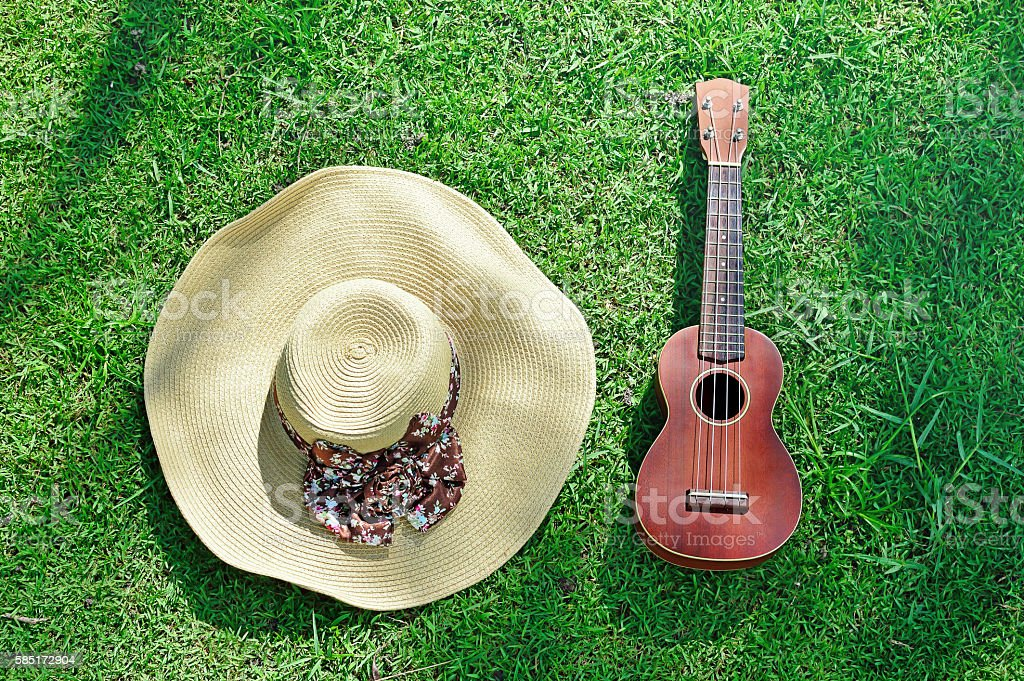 Top view of ukulele and hat on grass stock photo