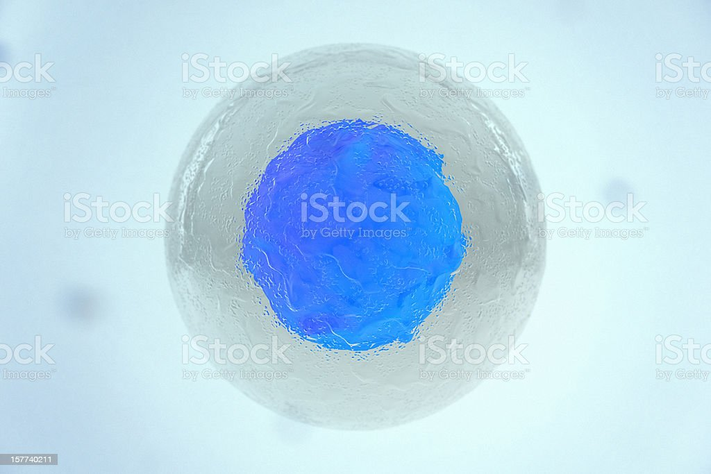 Top-angle closeup of a stem cell royalty-free stock photo