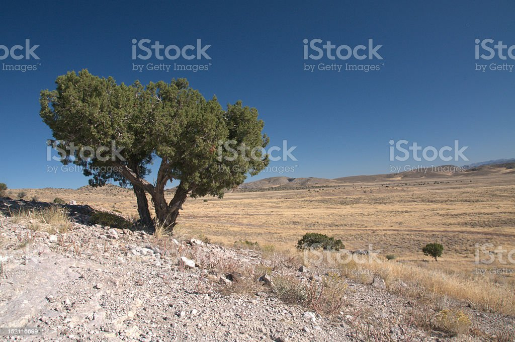 Topaz mountain landscape stock photo