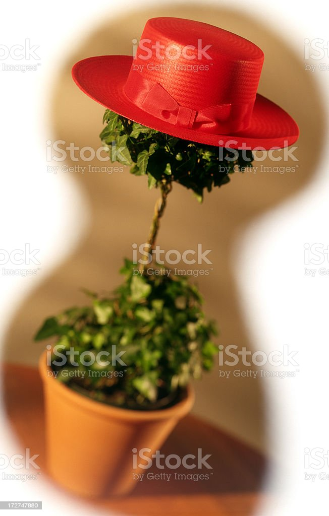 Topiary Hat Stand stock photo