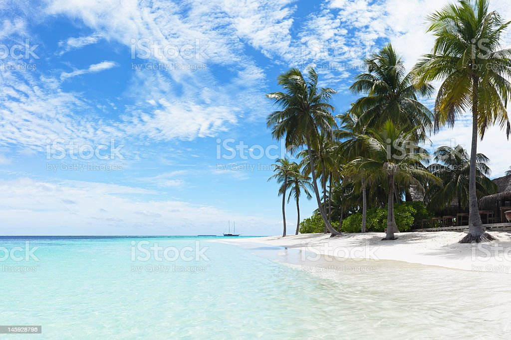 Topical beach royalty-free stock photo