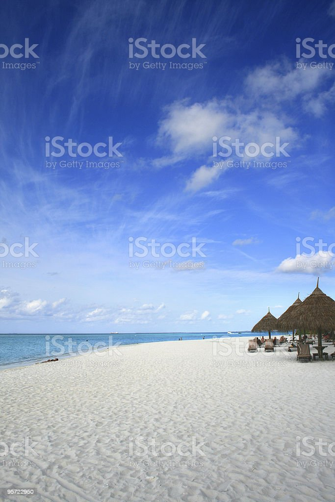 topical beach with coconut palm trees royalty-free stock photo