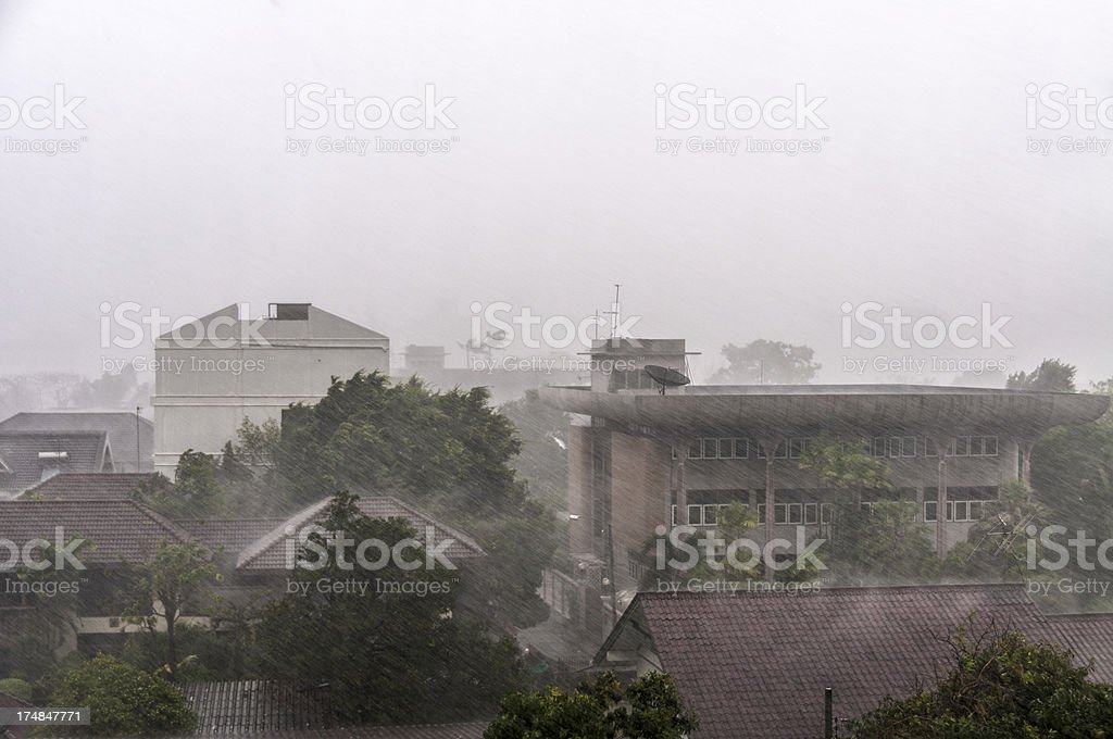 Topical Rain Shower In The City royalty-free stock photo
