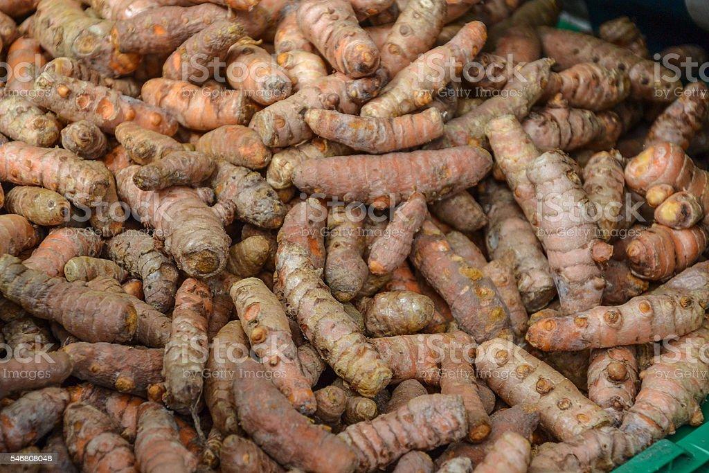 topinambur jerusalim artichoke stock photo
