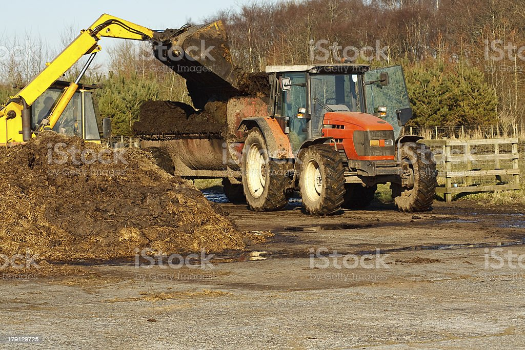 Topping up with manure stock photo