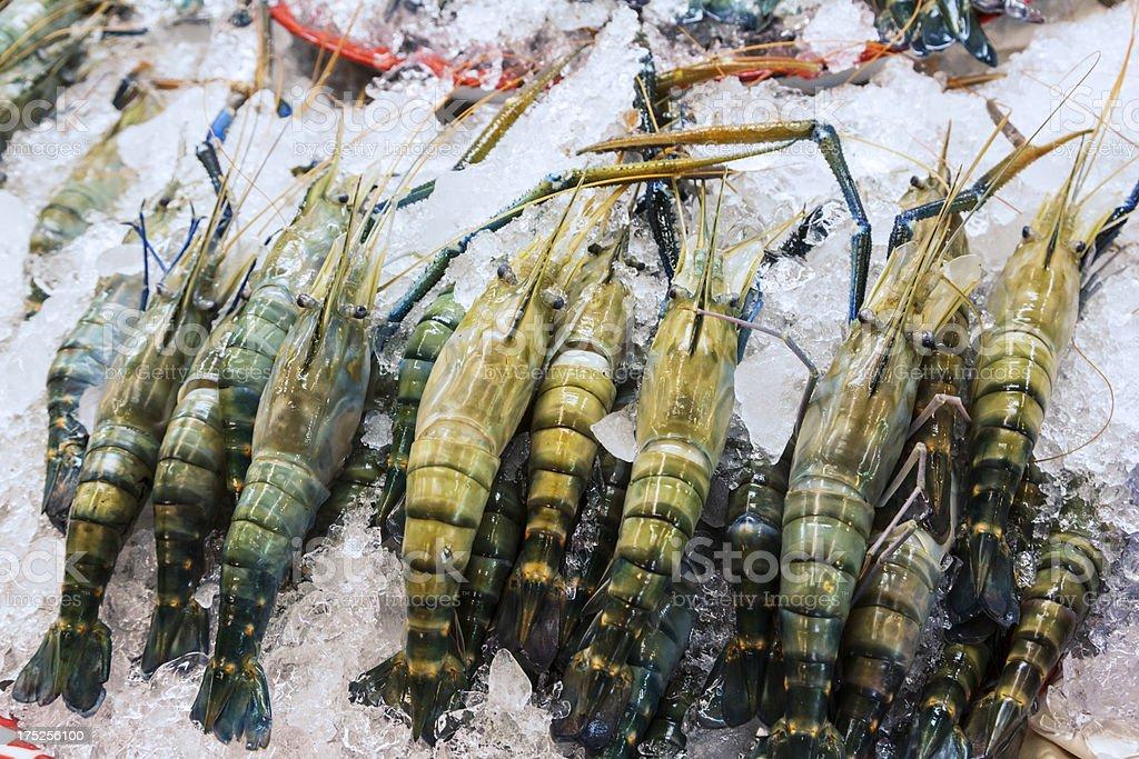 OR Tor Kor farmers market in Bangkok. Big prawns royalty-free stock photo