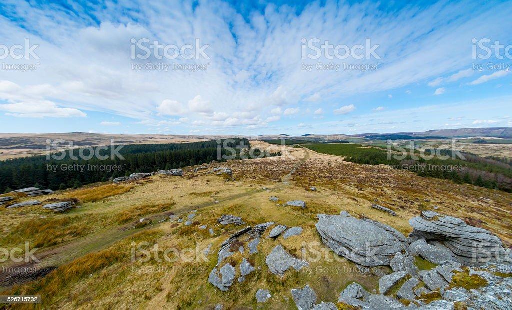 Tor & Wood on Dartmoor stock photo