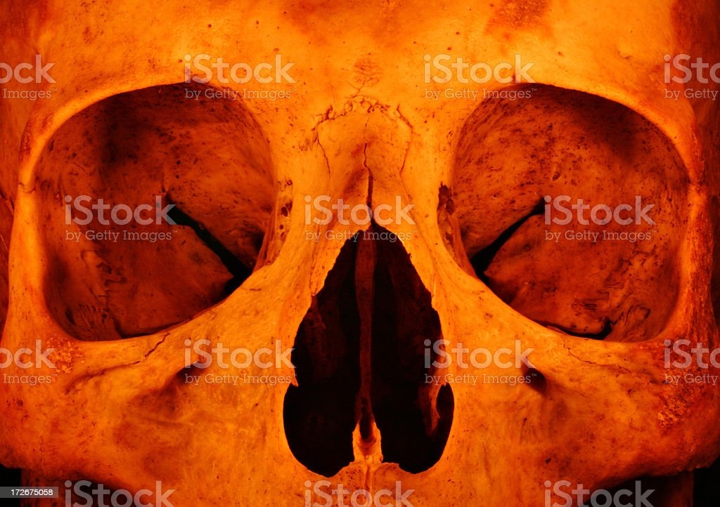 Torchlight Skull stock photo