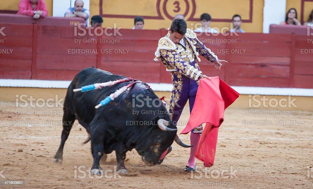 ToreroManzanares02 stock photo