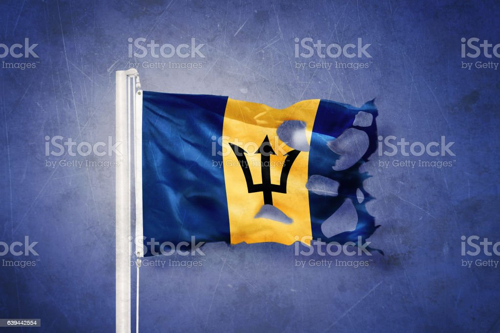 Torn flag of Barbados flying against grunge background stock photo