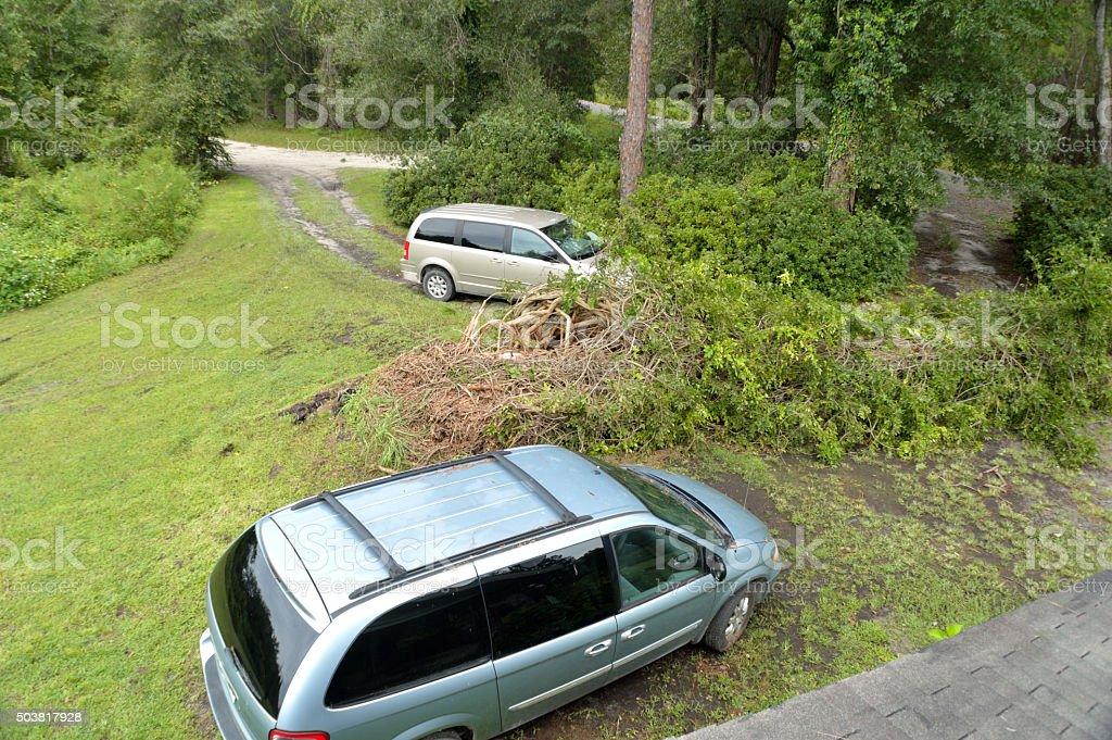 EF0 Tornado Damage in North Florida stock photo