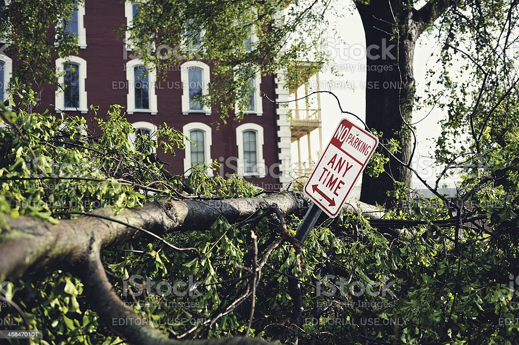 Tornado Damage in Raleigh NC royalty-free stock photo