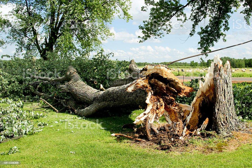 Tornado Storm Damage stock photo