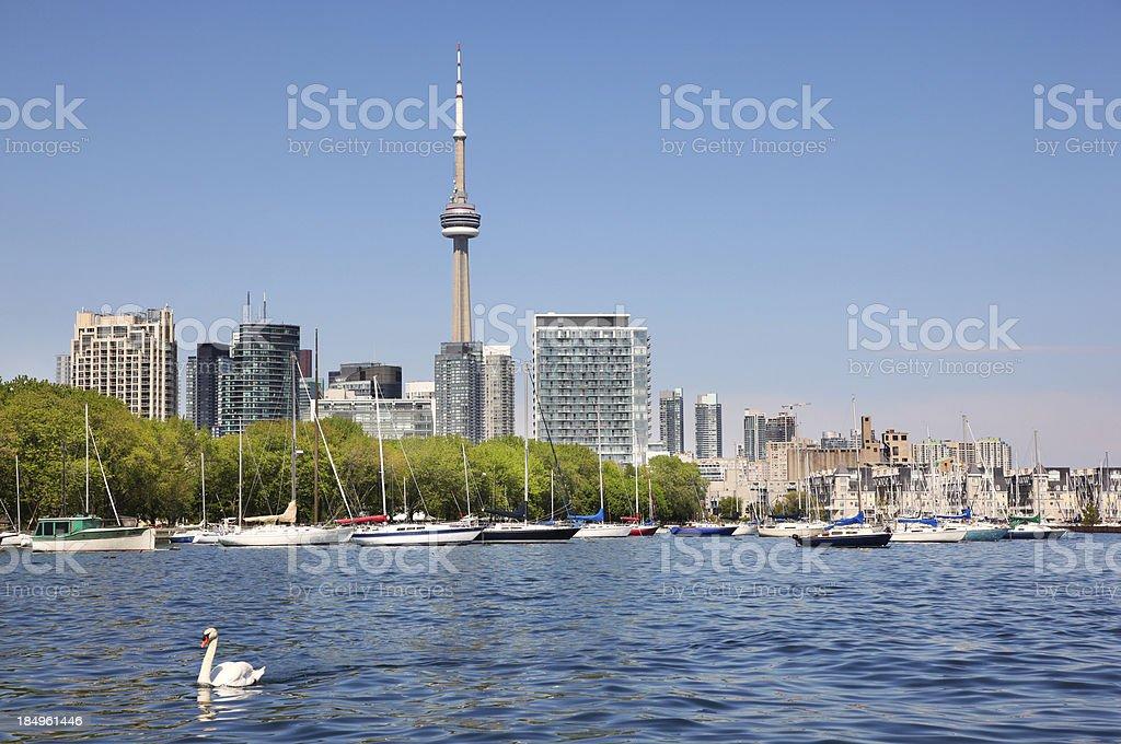 Toronto City and Marina in Summer stock photo