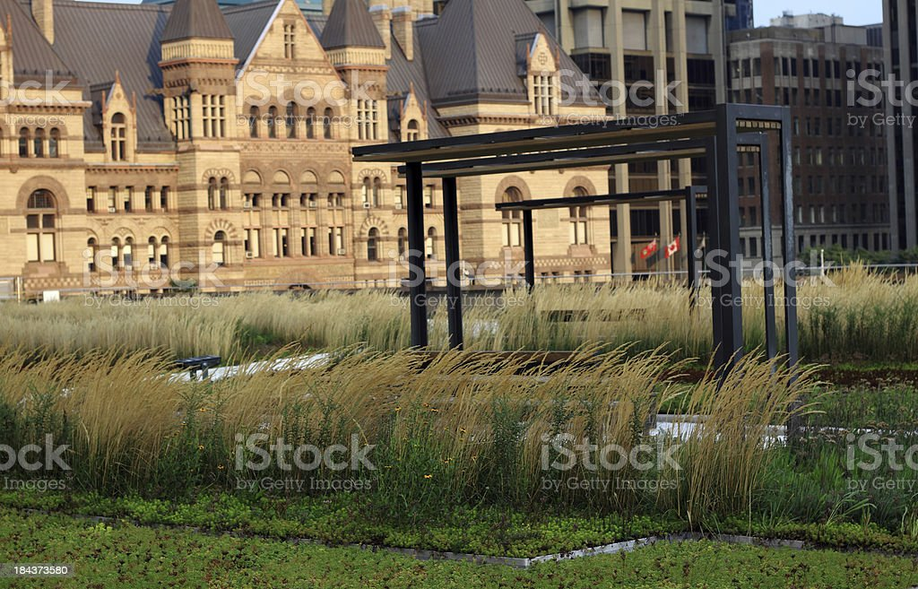 Toronto City Hall Podium Green Roof royalty-free stock photo