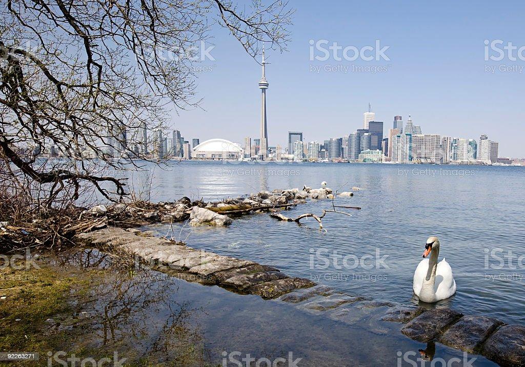 Toronto City stock photo