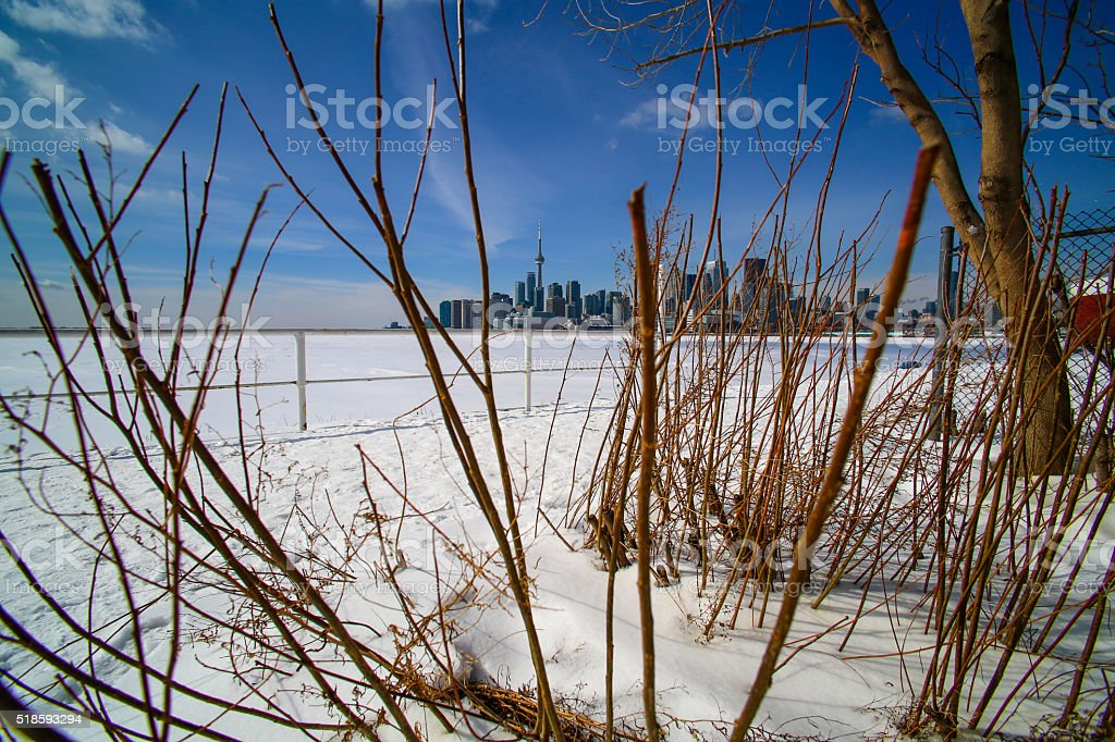 Toronto Harbour Skyline stock photo