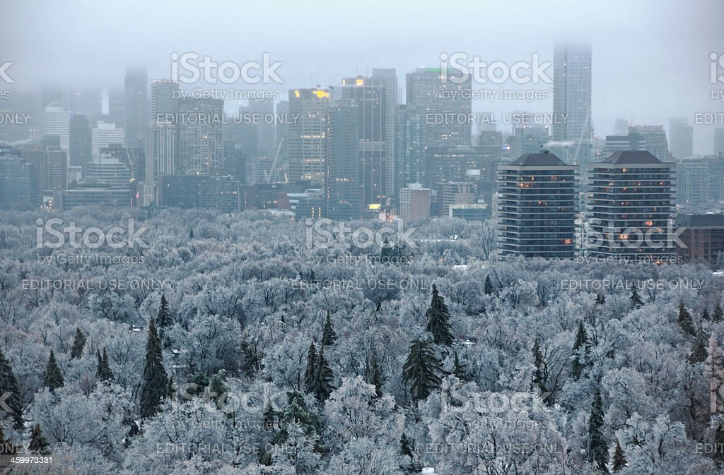 Toronto Ice Storm stock photo
