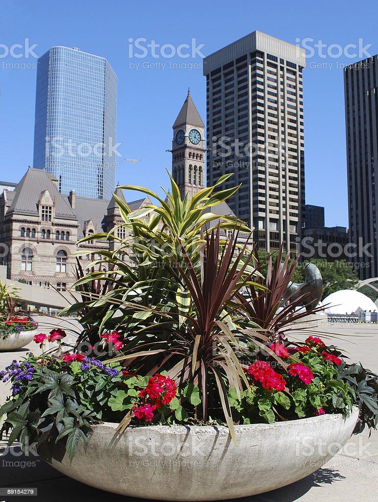 Toronto Old City Hall view stock photo