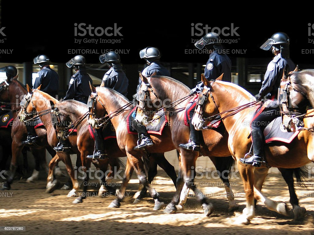 Toronto Police Mounted Unit drill team exercises stock photo