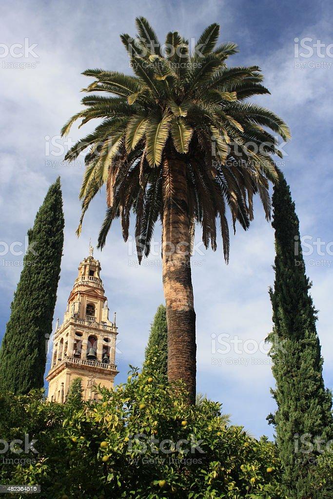 Torre de la Mezquita in Cordoba stock photo