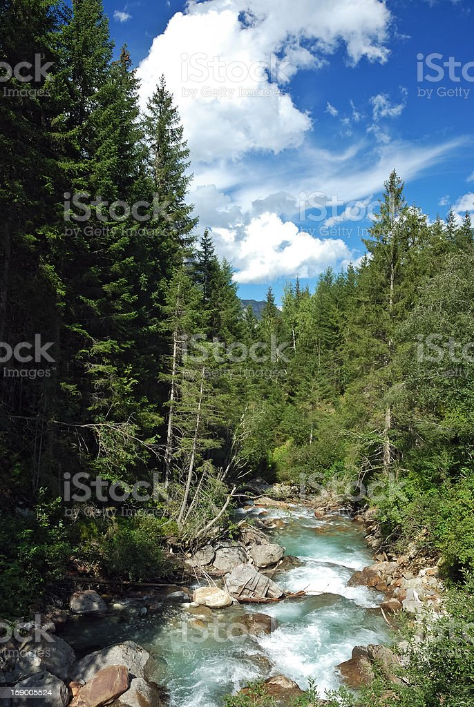 Wildbach in Tirol stock photo