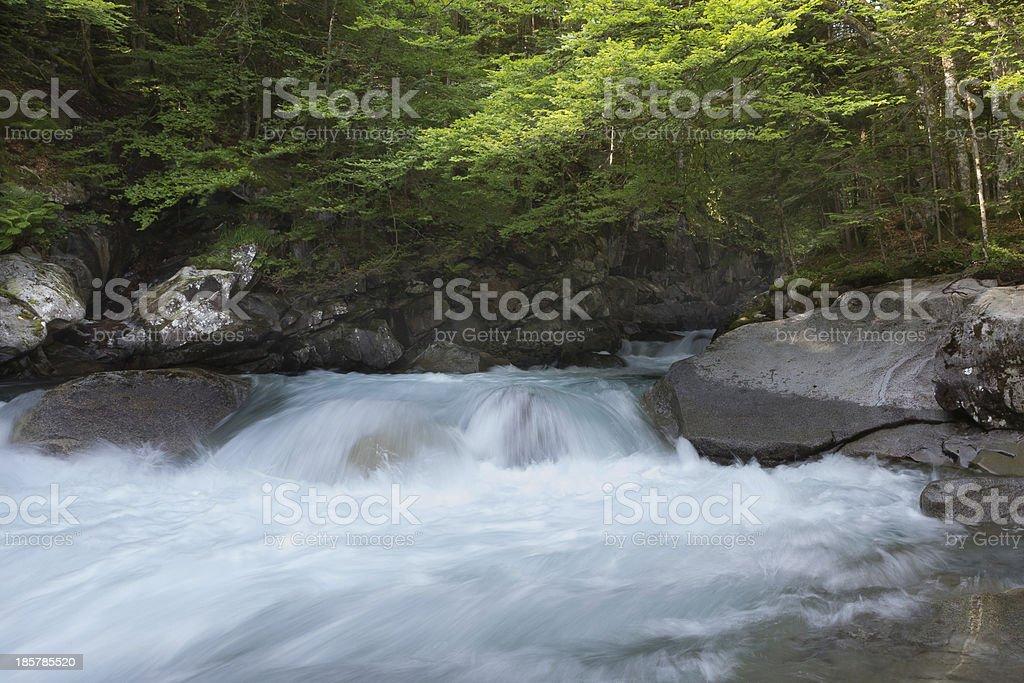 Torrent stock photo